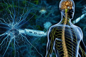 درمان «ام اس» با طب سنتی، ادعایی واهی است